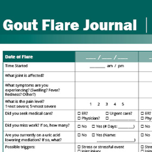 Gout Flare Journal